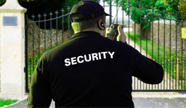 Security Firms London
